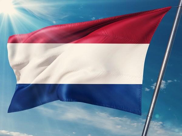 Corso Online di Olandese su Misura 12 Mesi